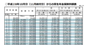 【みんなのねんきん】平成29年10月分からの保険料額表